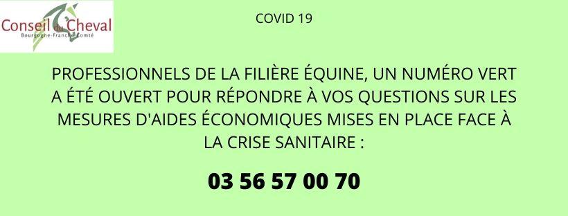COVID-19 : Un numéro vert pour vous informer sur les aides disponibles pour votre structure