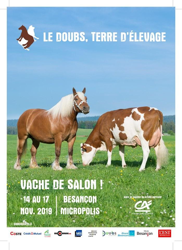 Vaches de Salon