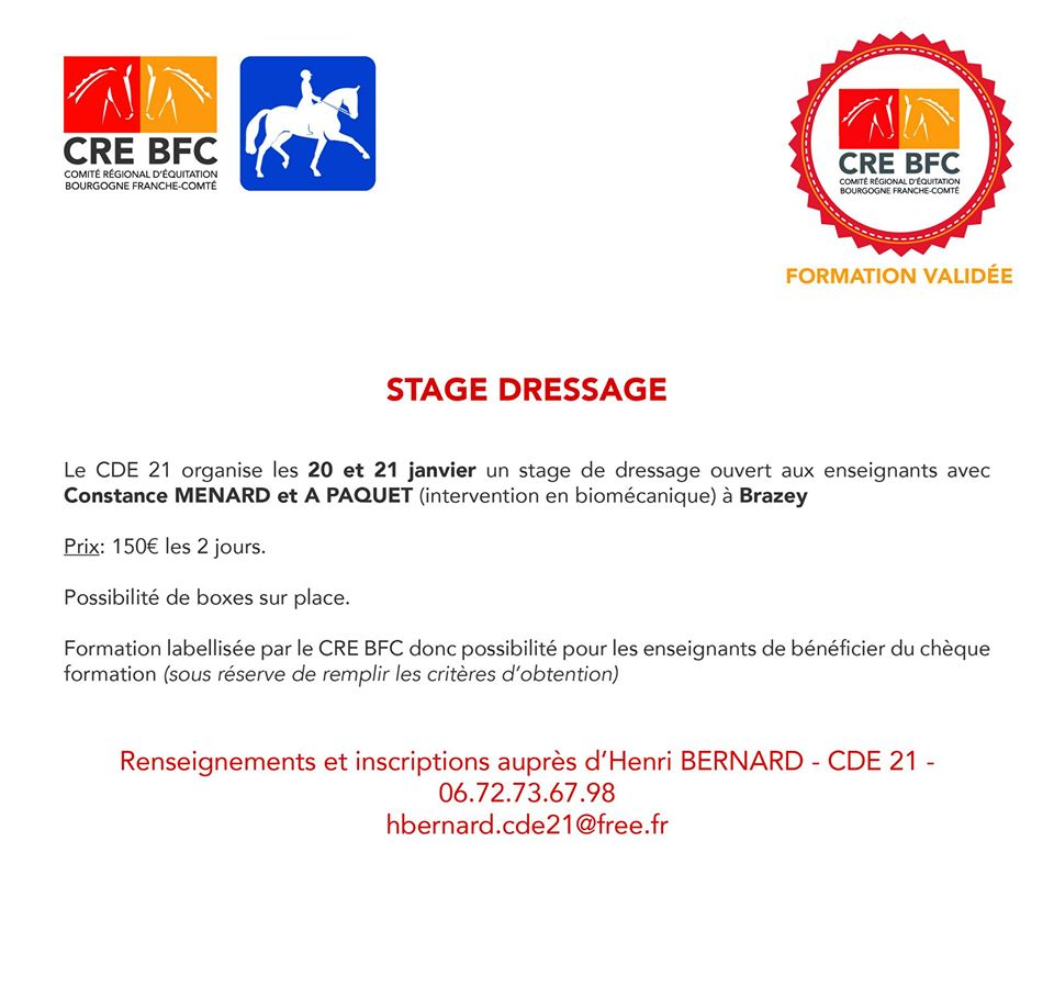 Stage Dressage à Brazey en Plaine (21)