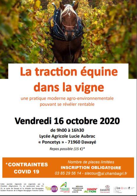 La traction équine en viticulture