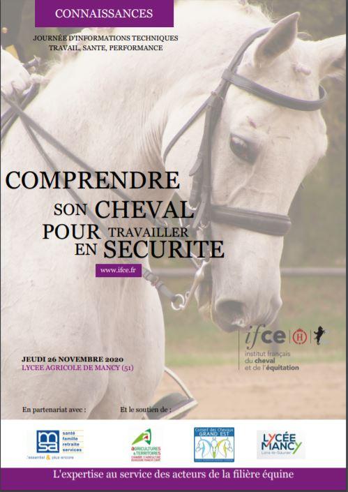 Journée Ifce/MSA : Comprendre son cheval pour travailler en sécurité