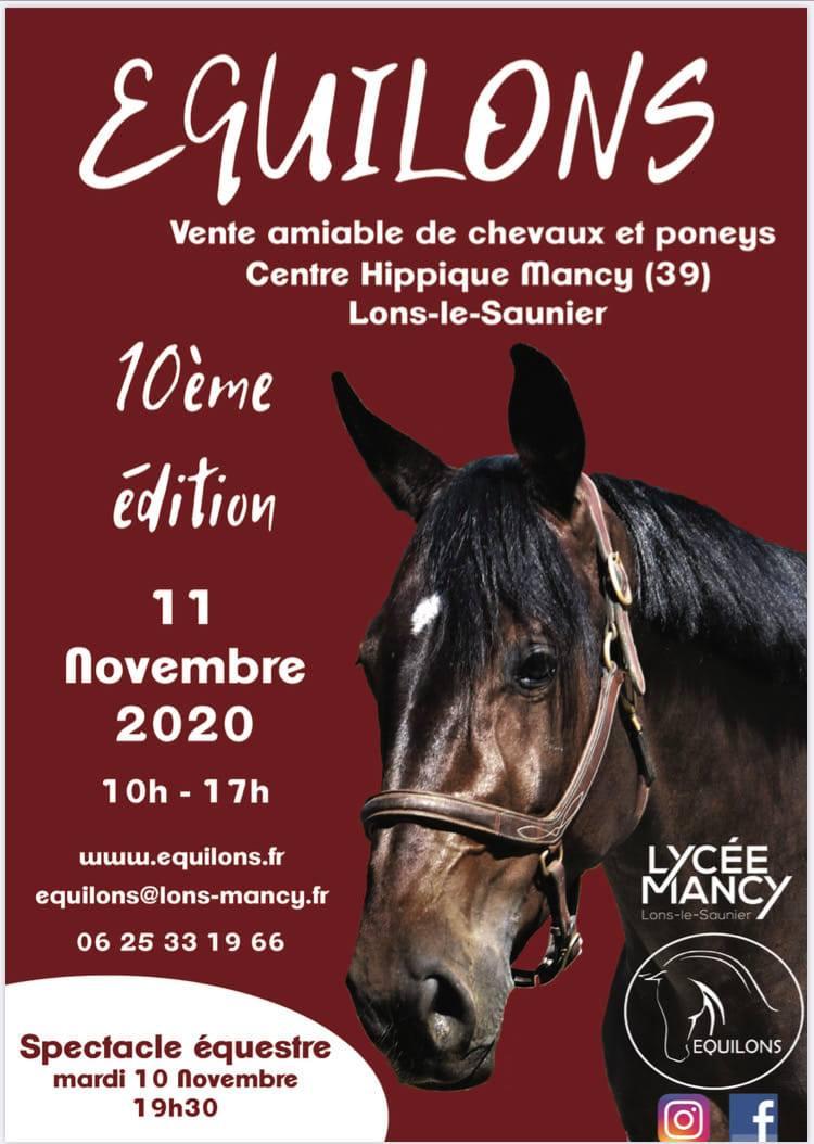 ANNULE Vente amiable de chevaux et poneys EQUILONS