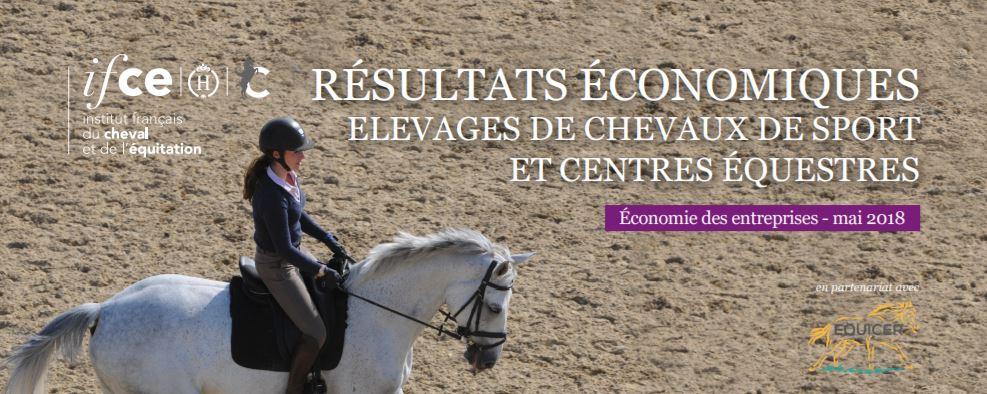 Quels sont les résultats économiques des centres équestres et des élevages de chevaux de sport ?