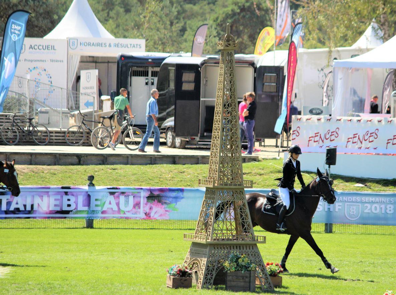 Cycles Libres : Plusieurs chevaux issus d'élevages de Bourgogne Franche-Comté classés à Fontainebleau