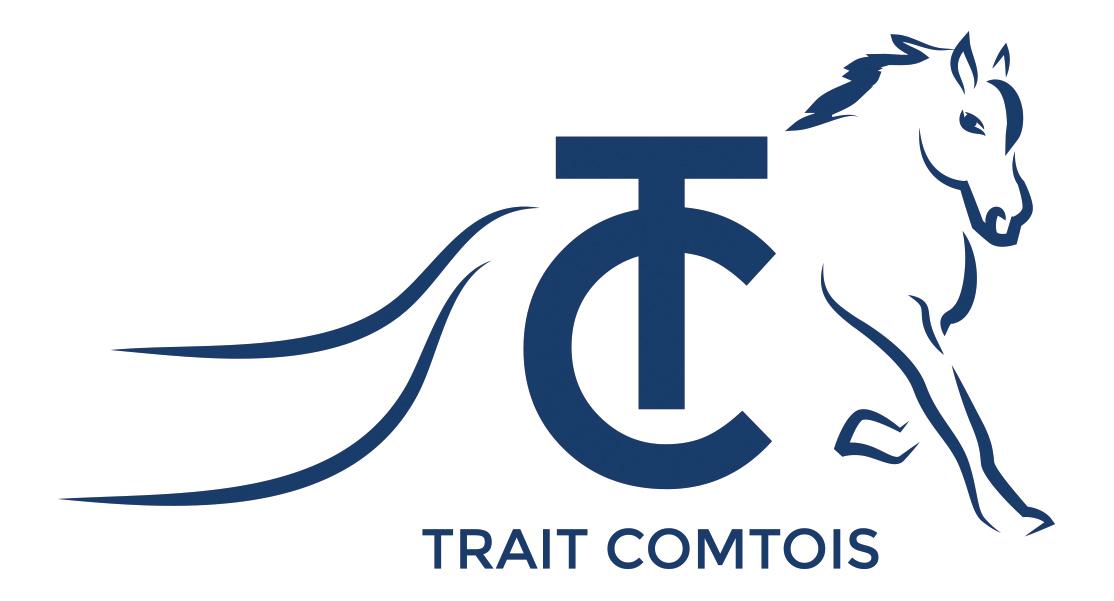 Concours Modèles et Allures Trait Comtois, à Gennes/Besançon (25)
