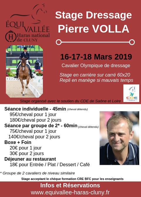 Stage dressage avec Pierre Volla à Cluny (71)