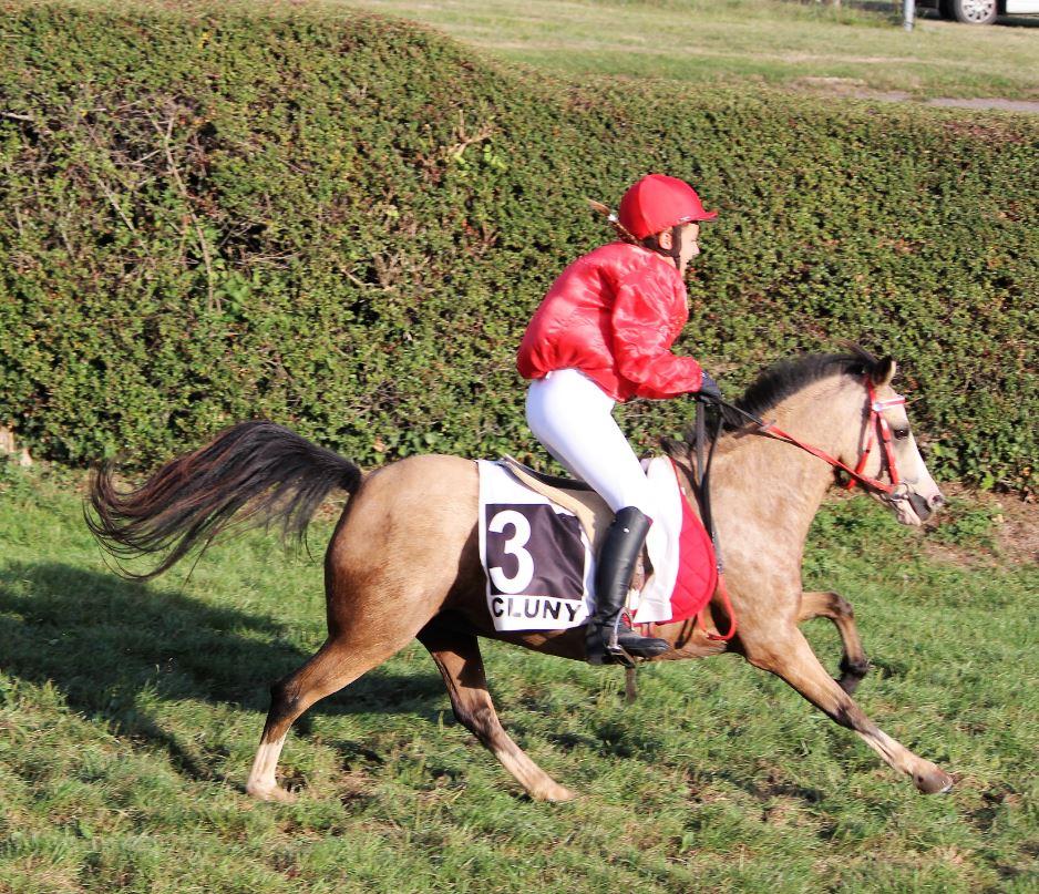 Stage d'initiation aux courses de poneys à l'Hôpital le Mercier (71)